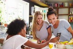 Amis féminins faisant le petit déjeuner tout en vérifiant le téléphone portable Photographie stock