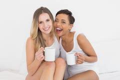 Amis féminins gais avec des tasses de café dans le lit Image stock
