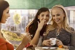 Filles heureuses au café Image stock