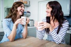Amis féminins heureux tenant des tasses de café tout en discutant à la table Photographie stock libre de droits