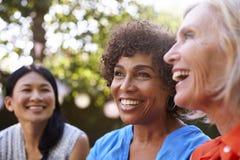 Amis féminins mûrs ayant une vie sociale dans l'arrière-cour ensemble Image stock