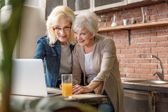 Amis féminins mûrs insouciants à l'aide de l'ordinateur dans la cuisine Images stock