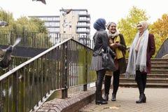 Amis féminins musulmans à l'aide du téléphone portable dans l'environnement urbain Images libres de droits