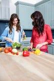 Amis féminins préparant la salade végétale Images libres de droits