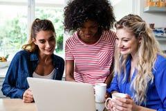 Amis féminins regardant dans l'ordinateur portable pendant le petit déjeuner Photo stock