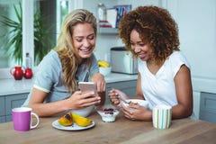 Amis féminins regardant dans le téléphone portable pendant le petit déjeuner Photos stock