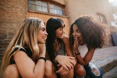 Amis féminins s'asseyant par la rue et le bavardage Images stock
