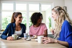 Amis féminins souriant tout en prenant le petit déjeuner à la table Photos libres de droits