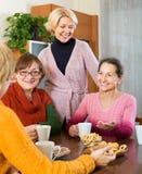 Amis féminins supérieurs buvant du café Photo libre de droits