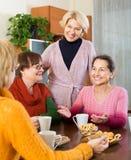 Amis féminins supérieurs buvant du café Image stock