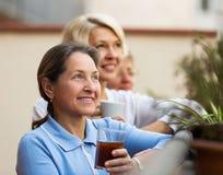 Amis féminins sur la terrasse d'été Photos stock