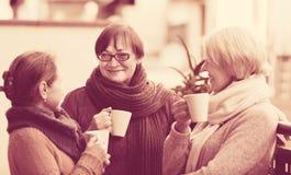 Amis féminins sur la terrasse d'été Images stock