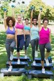 Amis faisant l'aérobic d'étape en parc Images stock