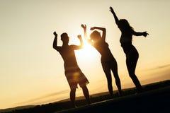 Amis faisant la fête pendant le coucher du soleil d'été Images stock