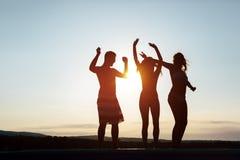 Amis faisant la fête pendant le coucher du soleil d'été Image stock