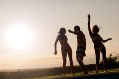 Amis faisant la fête pendant le coucher du soleil d'été Photographie stock libre de droits