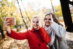 Amis faisant le selfie Deux belles jeunes femmes faisant le selfie en parc d'automne Images stock