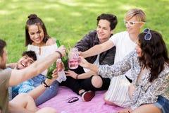 Amis faisant tinter des boissons au pique-nique en parc d'été Photographie stock