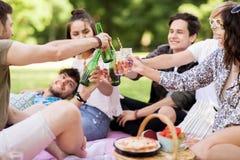 Amis faisant tinter des boissons au pique-nique en parc d'été Photos libres de droits