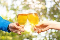 Amis faisant tinter des verres de bière Photo libre de droits