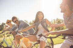 Amis faisant un cycle en parc Photo stock