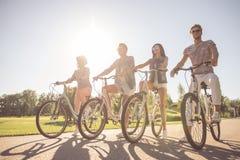 Amis faisant un cycle en parc Image stock