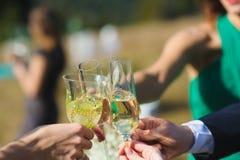 Amis gais avec des verres Photographie stock libre de droits