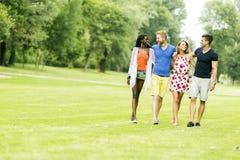 Amis gais marchant en parc et profiter d'un agréable moment Photo libre de droits