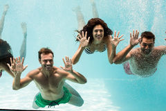 Amis gais nageant Image libre de droits