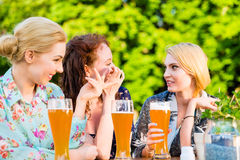 Amis grillant avec de la bière dans le bar de jardin Photographie stock libre de droits