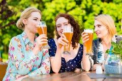 Amis grillant avec de la bière dans le bar de jardin Image stock