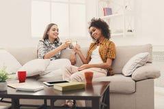Amis grillant avec des verres à vin à la maison Images stock