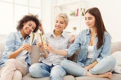 Amis grillant avec des verres à vin à la maison Images libres de droits