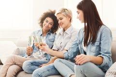 Amis grillant avec des verres à vin à la maison Photographie stock libre de droits