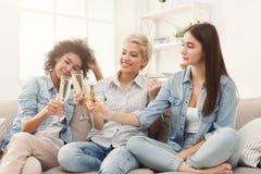 Amis grillant avec des verres à vin à la maison Image stock
