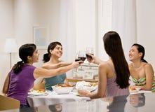 Amis grillant avec le vin rouge Photos libres de droits
