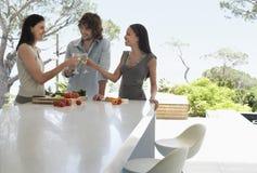 Amis grillant des verres à vin au comptoir de cuisine Photos stock