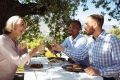 Amis grillant des verres de champagne au restaurant Images libres de droits