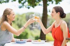 Amis grillant des verres de vin dans un restaurant Photo libre de droits