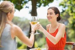 Amis grillant des verres de vin dans un restaurant Photos stock