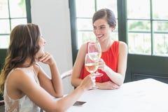 Amis grillant des verres de vin tout en se reposant Photo libre de droits