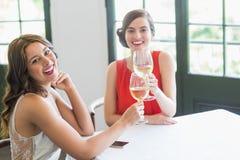Amis grillant des verres de vin tout en se reposant dans le restaurant Images libres de droits