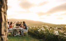 Amis grillant le champagne au dîner photos stock