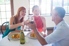 Amis grillant le verre de vin tout en ayant le repas Images libres de droits