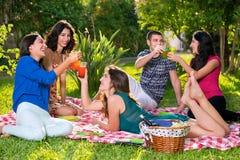 Amis grillant un jour ensoleillé en parc Photo stock