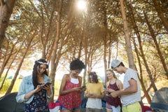 Amis heureux à l'aide des téléphones portables au terrain de camping Photographie stock