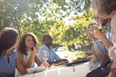 Amis heureux agissant l'un sur l'autre tout en ayant le verre de vin Photos libres de droits