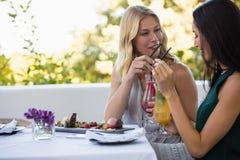 Amis heureux ayant des boissons tout en se reposant ensemble au restaurant Photos stock