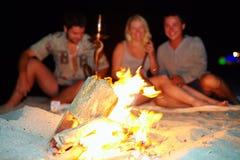 Amis heureux ayant l'amusement autour du feu Image libre de droits