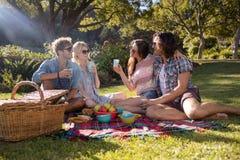 Amis heureux ayant le pique-nique dans le parc Photos stock
